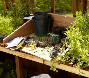 Potting trays